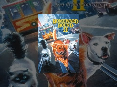 Homeward Bound II: Lost in San... is listed (or ranked) 8 on the list The Best Live Action Animal Movies for Kids