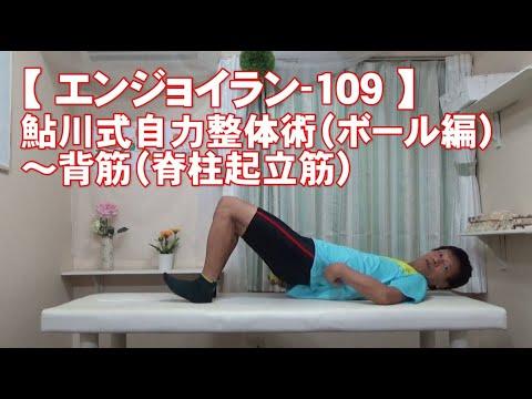#109 背筋(脊柱起立筋)/鮎川式自力整体術(ボール編)・身体ケア【エンジョイラン】