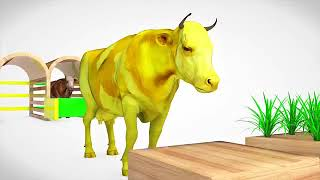 Learn Colors with Cow Transporter Truck For Kids | Colours Cow Slides Nursery