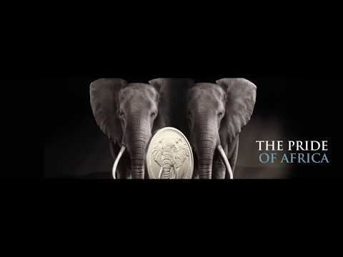 South African Mint | The Big Five - Elefant