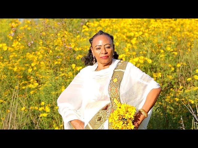 Maritu Legesse - Addis Amet | - New Ethiopian Music 2017 (Official Video)