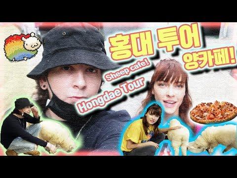[VLOG] 미초바와 깜짝 홍대 투어 + 양카페!(Feat. 일일도우미데이브) Quick Hongdae Tour with Stefanie + Sheep Cafe