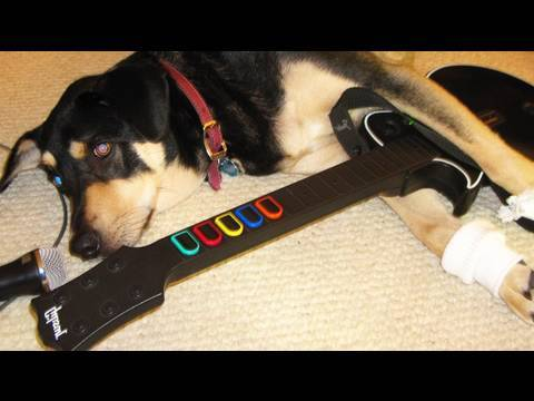 My Dog Plays Rockband! (8.22.09 - Day 114)