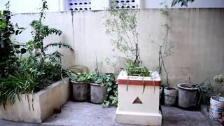 Independent house for rent at Ashok nagar