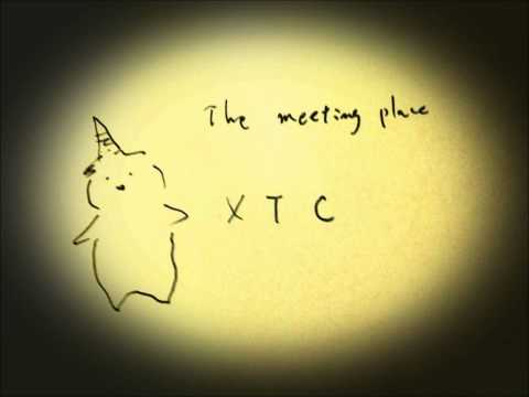 XTC / The Meeting Place Melodion Acoustic Cover