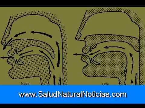 Lavar la vesícula biliar y piedra Disolución Parte 3