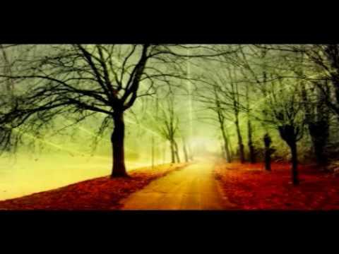 Way To Heaven - Reiki Music video