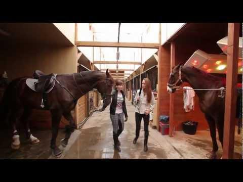 Иппология - наука о лошадях