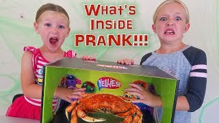 What's in the Box Challenge? Dad Pranks Girls Yellies Toys With REAL Crab!!