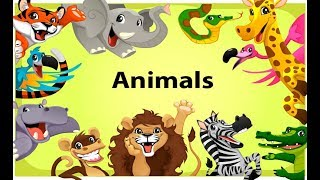 Learning Wild Animals Names and Sounds for Kids | Animals for kids to learn