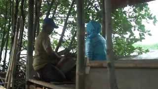 Tepung Mangrove Pangan Bergizi Dari Pesisir Nusantara