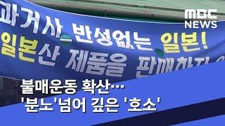 불매운동 확산…'분노'넘어 깊은 '호소' (2019.07.20/뉴스데스크/MBC)