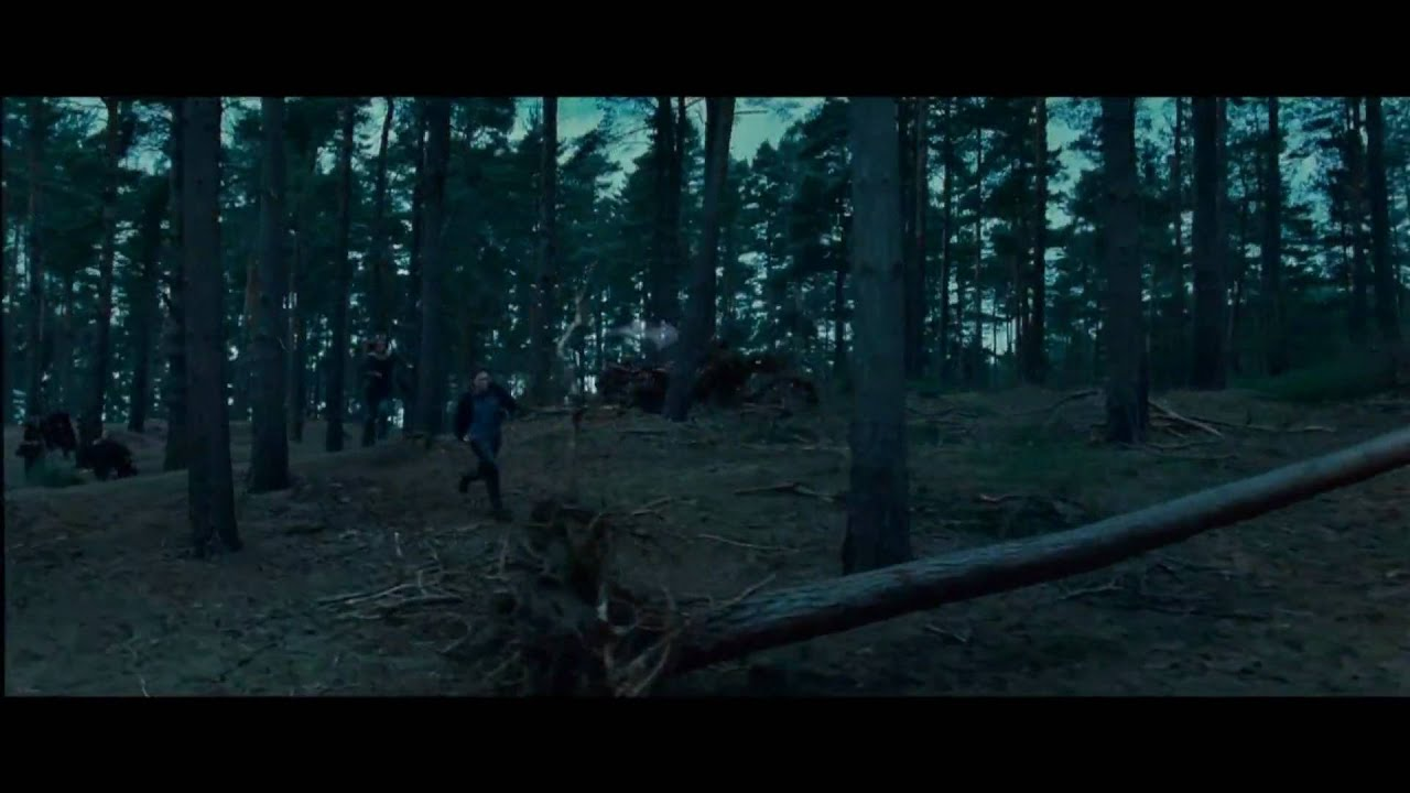 harry potter and the deathly hallows part 1 1080p yify