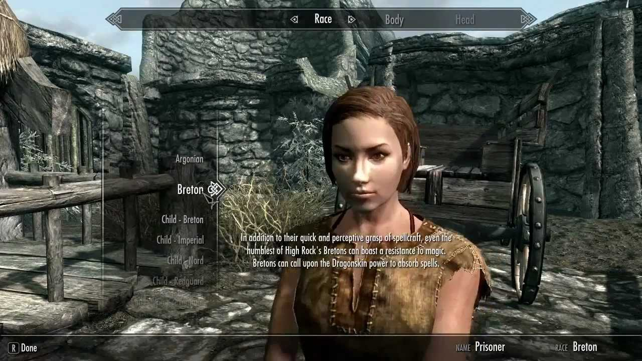 skyrim special editon how to know what build yo have