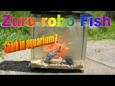 Zuru robo fish robot shark in aquarium how to save for Robo fish tank