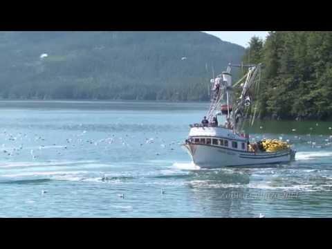 Nature Footage – Cordóva, Alaska