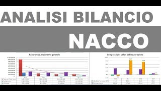 Analisi di Bilancio Preliminare di Nacco Industries