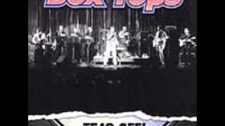 download lagu I'm Your Puppet   The Box Tops gratis
