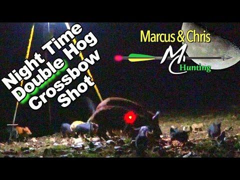 Night Time DOUBLE HOG Crossbow Shot - 4K - Marcus & Chris Hunting - Seas3 Ep11