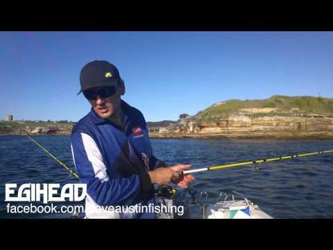 Squid Scene Australia - Egihead Comp Squid off...