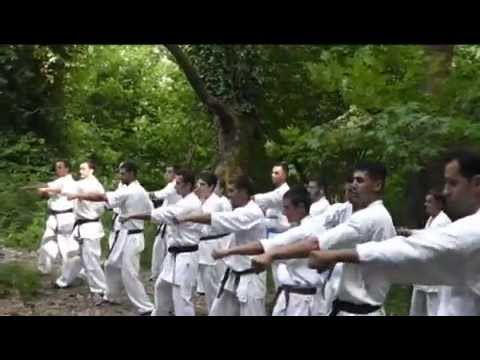 Kyokushin Karate - Otario Dojo - The Natural Training Image 1