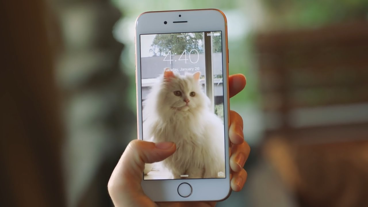 Как делать живые фото на айфон 6 s