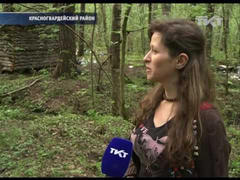 """30.05.2017 """"Леших"""" и """"русалок"""" попросят освободить домик в лесу"""