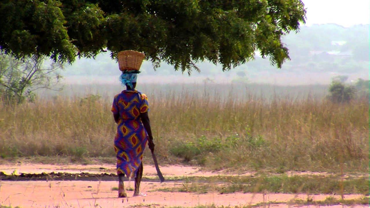 Paseos en África - Paseos en África