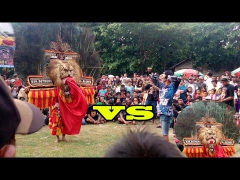 Nekat !!! pemuda ini menantang Reog Ponorogo Asli Singo barong Malik di Banaran Geger Madiun
