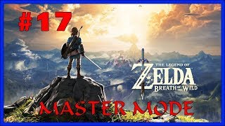 The Legend of Zelda: Breath of the Wild Master Mode Part 17 Live Stream (2/20/2019)
