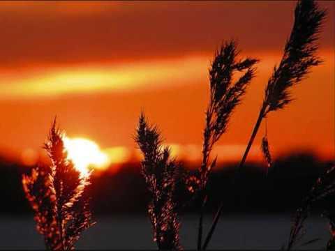 Songs Ohia - Coxcomb Red