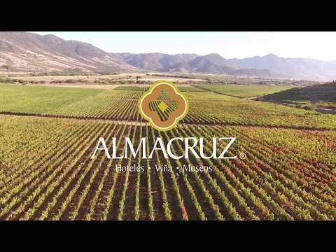 WEINREISEN - ERLEBNISREISEN NACH CHILE | Südamerika entdecken mit SMS Frankfurt Group Travel #Chile