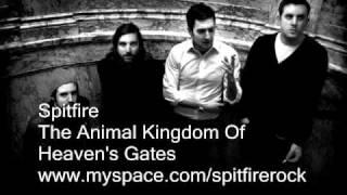 Watch Heavens Gate Animal video
