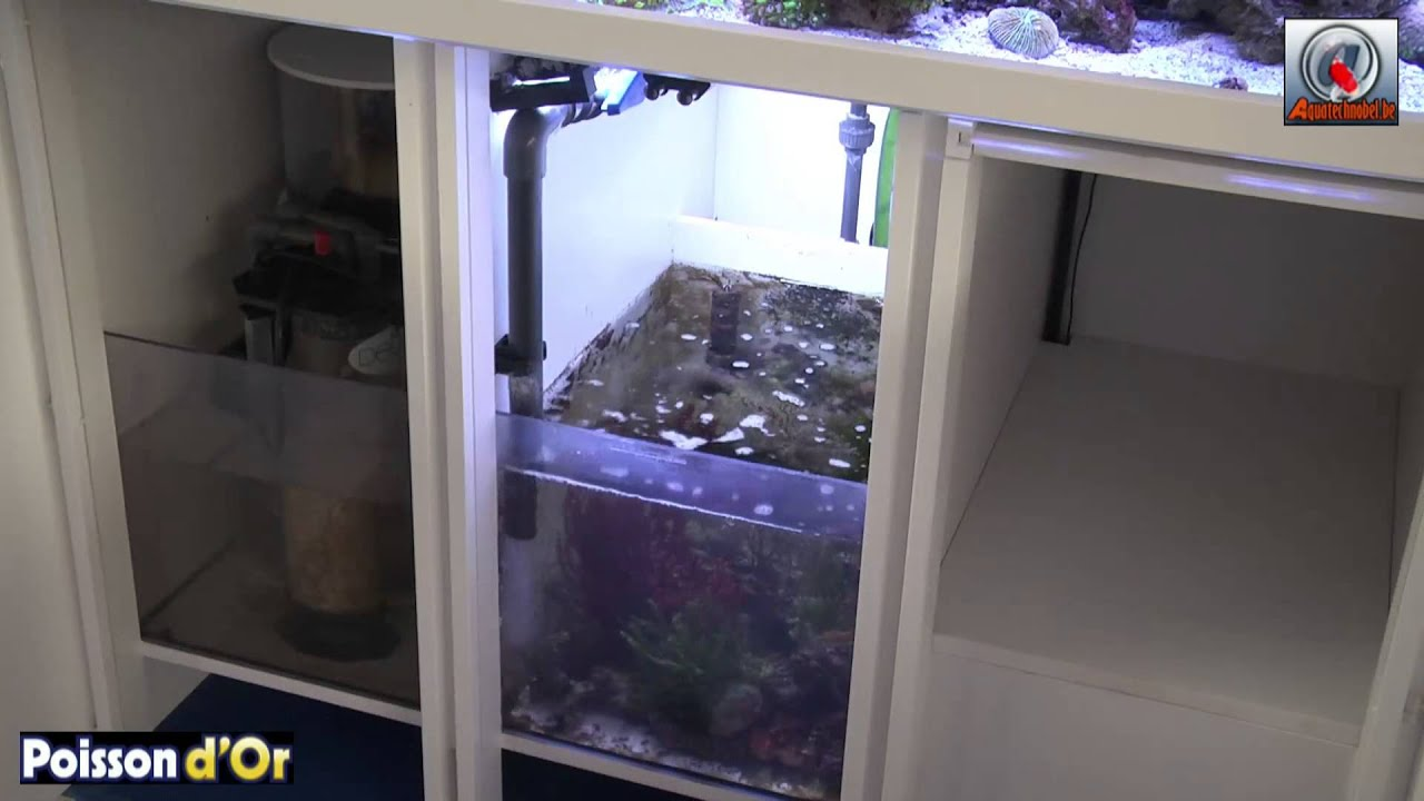 Aquavideomag 23 aquarium r cifal youtube for Aquarium recifal complet
