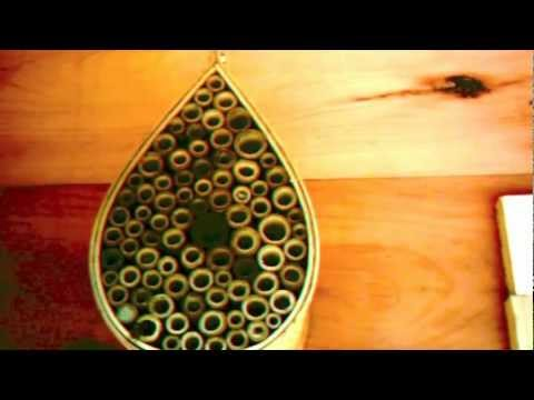 Mason Bee House Time Lapse .