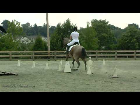 Jill Murray on Takoda, 1st-3, Heavenly Waters Dressage, 6/20/2010 Video