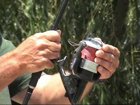 La pêche sur le lac siverskoe le domaine de Vologda