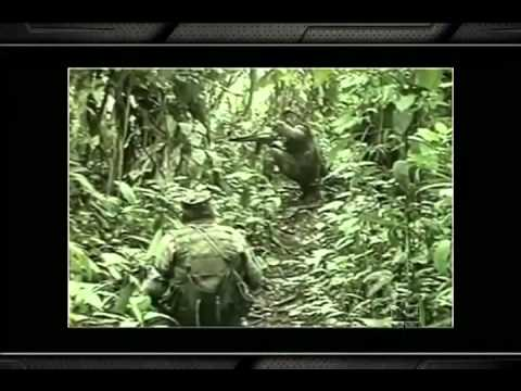 Fuerzas Comando 2012