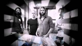 Watch Foo Fighters Dear Lover video