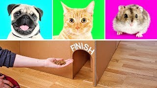 3 Cool Cardboard Crafts That Will Knock Your Socks Off