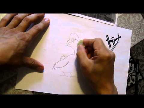 Видео как нарисовать гуся карандашом поэтапно