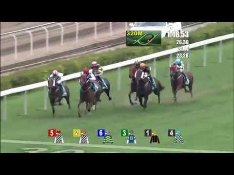 Vidéo de la course PMU CHAMPIONS MILE