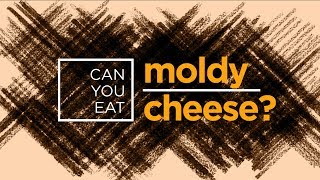 Can You Eat Moldy Cheese?