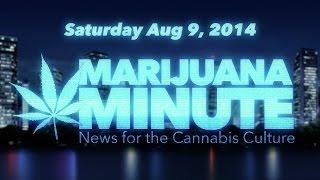 Marijuana Minute, Aug 09 2014: Fecal and Vaginal Bacteria in Medical Marijuana?