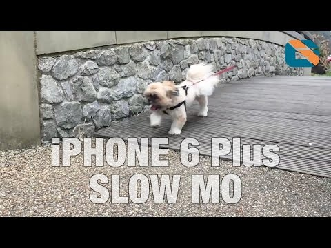 Apple Iphone 6 Plus Slow Motion Video Sample #iphone6plus #slowmo video