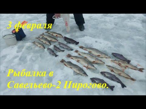 ловля форели в феврале