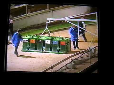 Dog Racing Final 1995 BBC TV Trophy