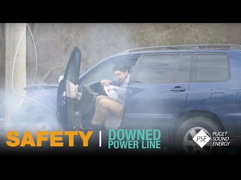 This Might Shock You: Downed Power Line