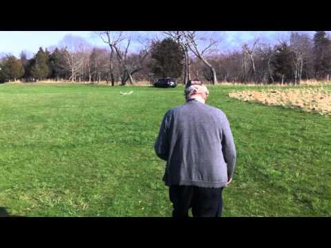 Glider Crash - Radian by Parkzone