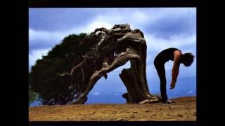 Watch Brian May One Rainy Wish video